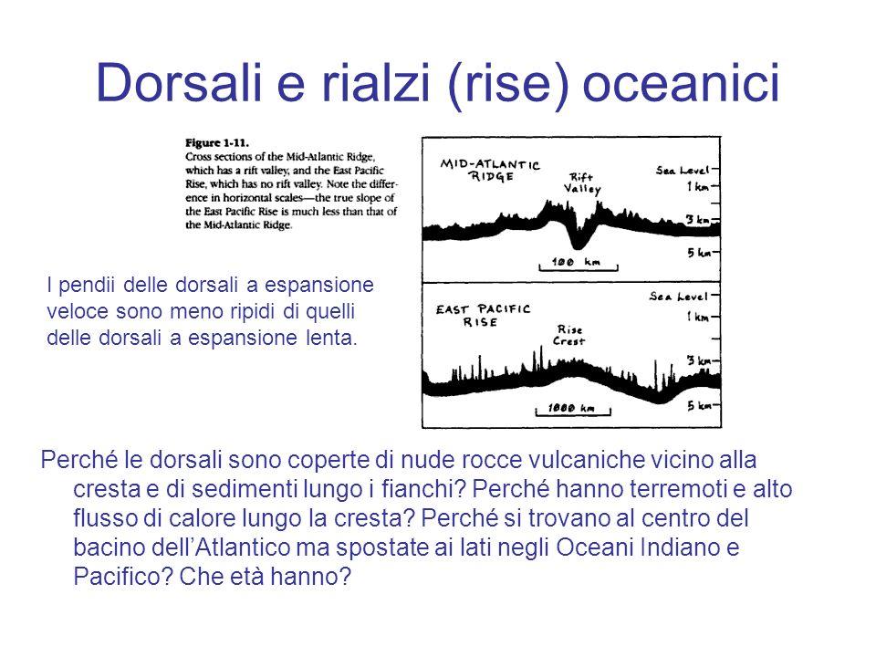 Dorsali e rialzi (rise) oceanici