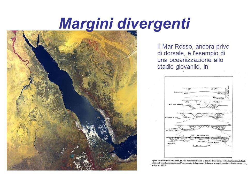 Margini divergenti Il Mar Rosso, ancora privo di dorsale, è l esempio di una oceanizzazione allo stadio giovanile, in propagazione verso nord.