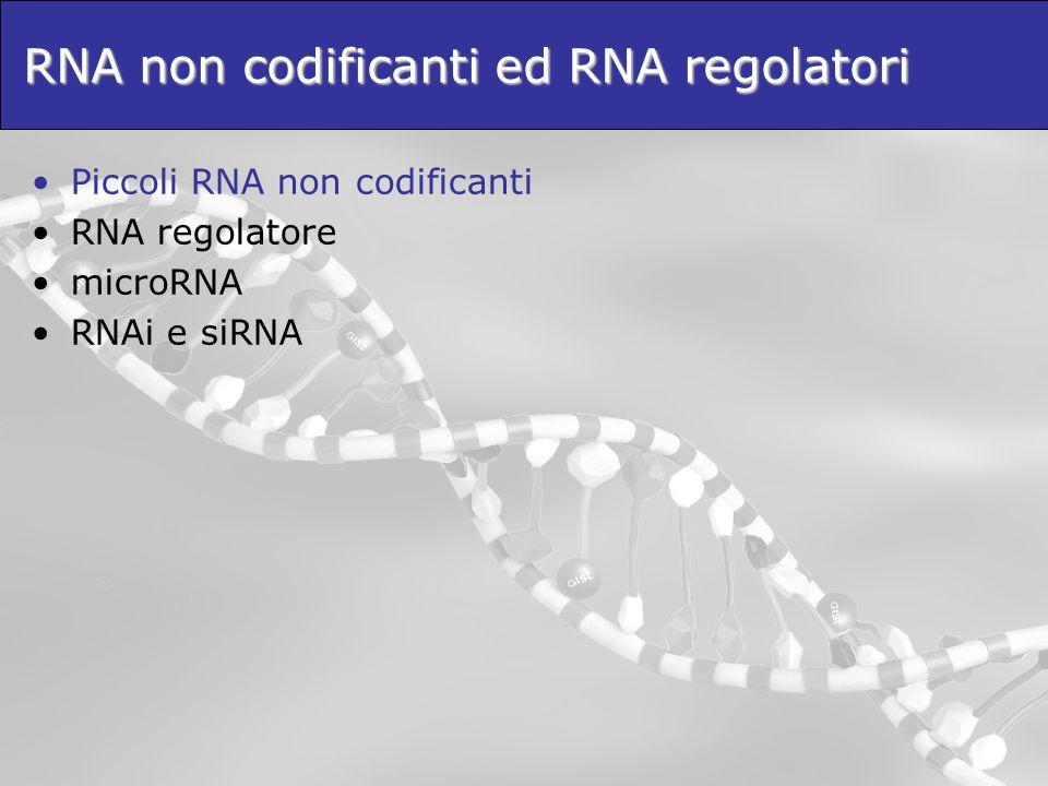 RNA non codificanti ed RNA regolatori