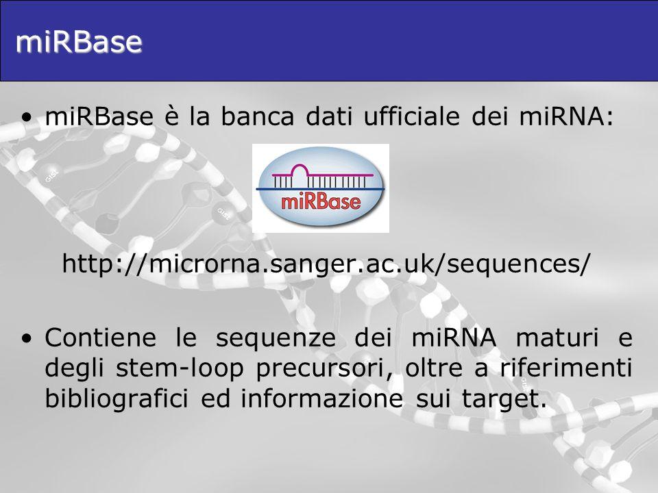 miRBase miRBase è la banca dati ufficiale dei miRNA: