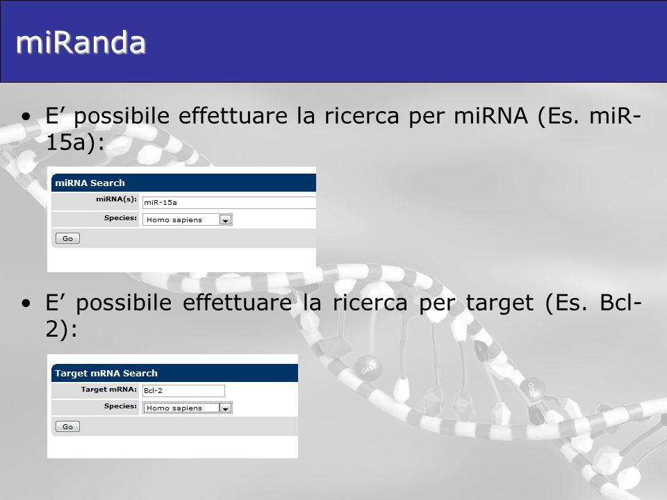 miRanda E' possibile effettuare la ricerca per miRNA (Es. miR-15a):