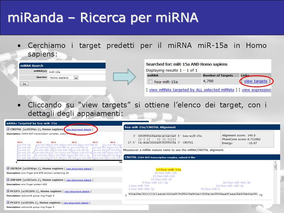 miRanda – Ricerca per miRNA