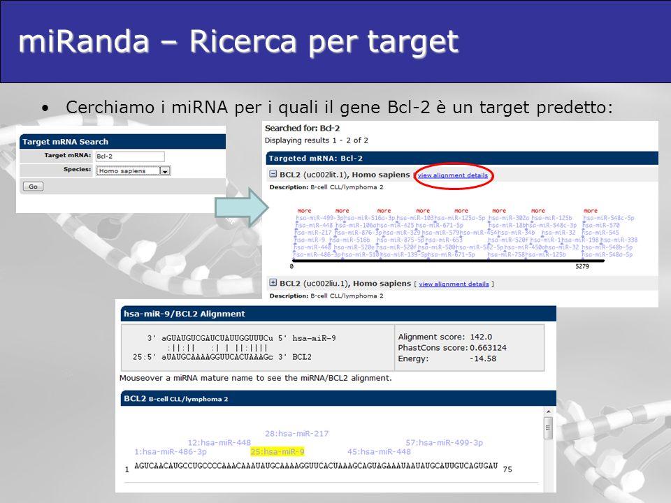 miRanda – Ricerca per target