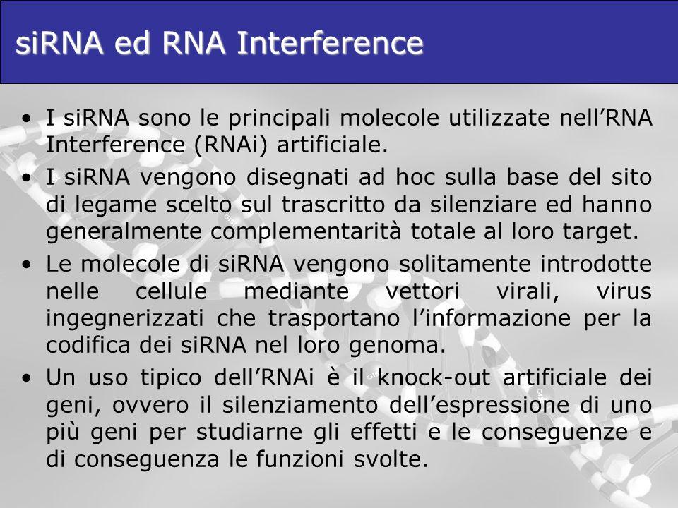 siRNA ed RNA Interference