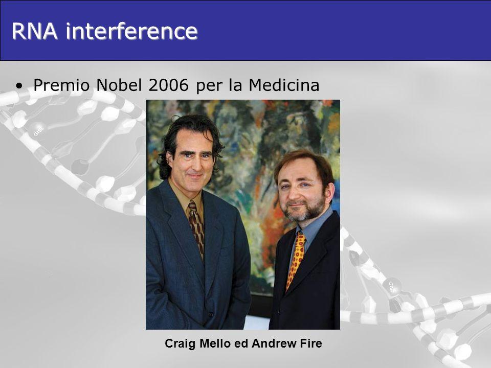 Craig Mello ed Andrew Fire