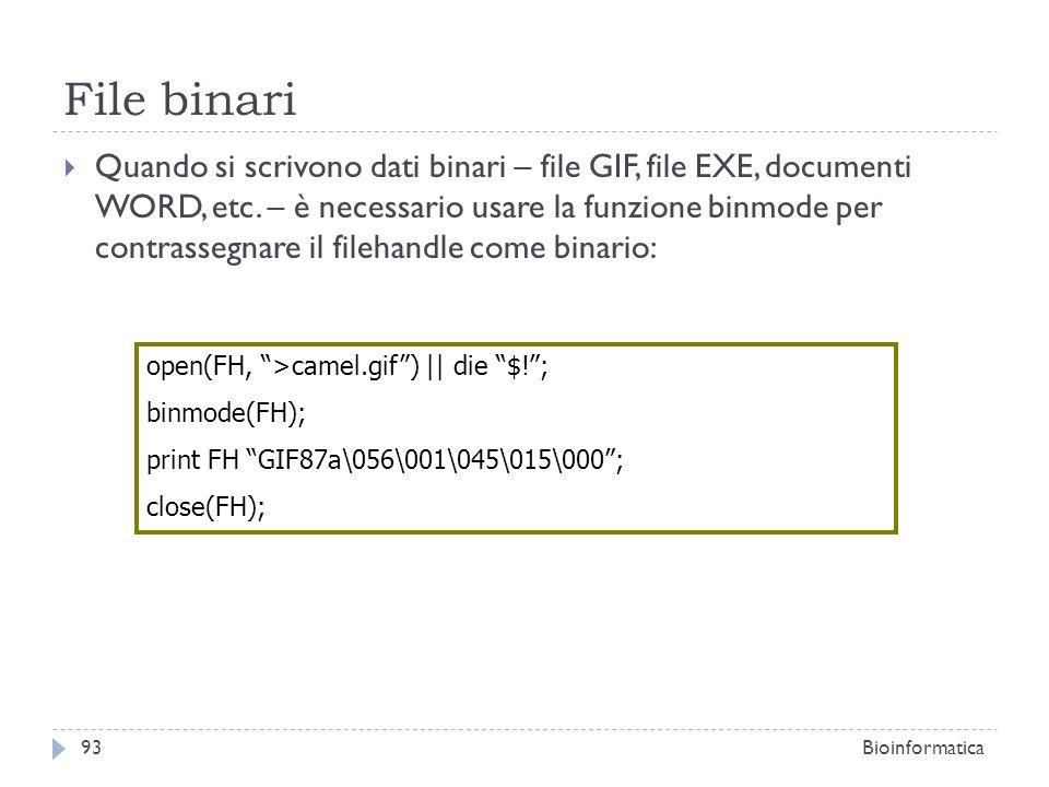 File binari