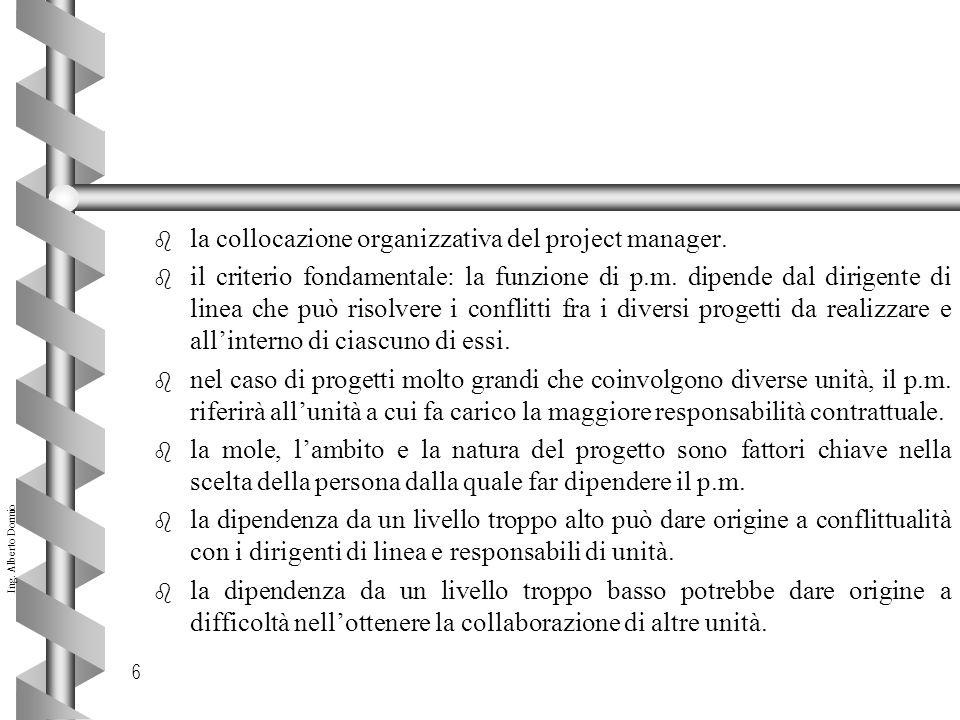 la collocazione organizzativa del project manager.