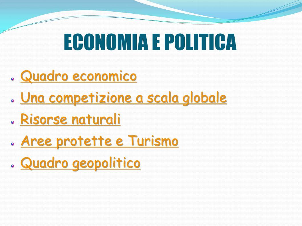 ECONOMIA E POLITICA Quadro economico Una competizione a scala globale