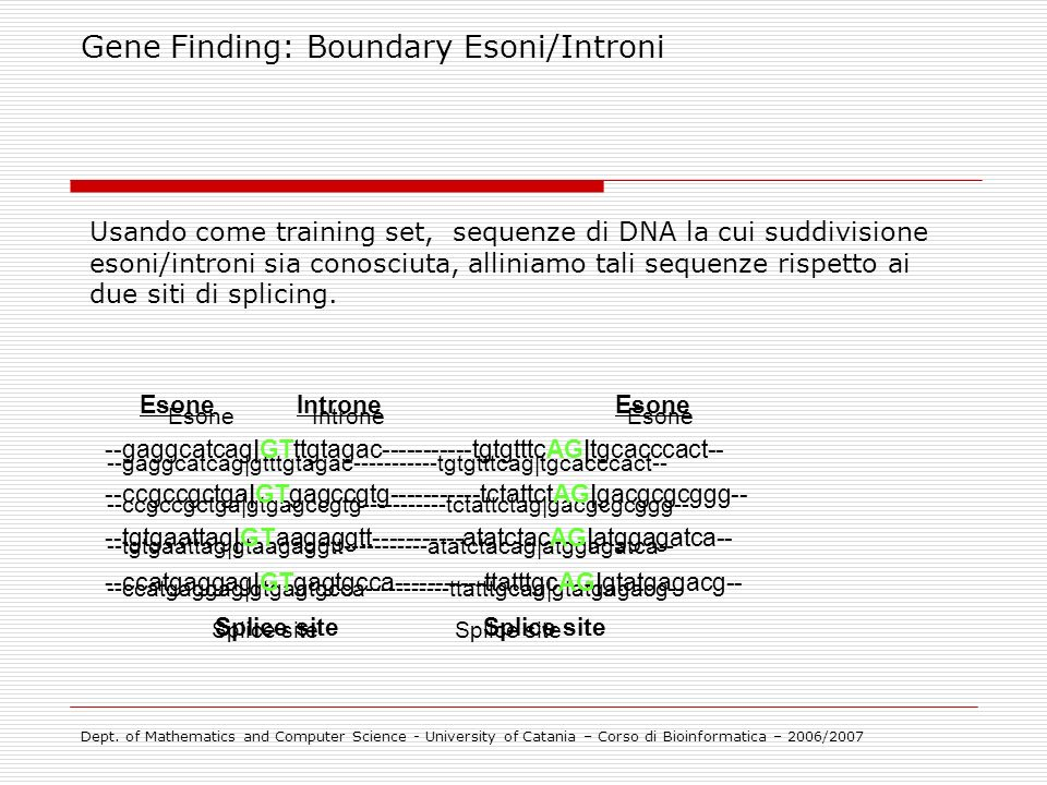 Esone Introne Esone Gene Finding: Boundary Esoni/Introni