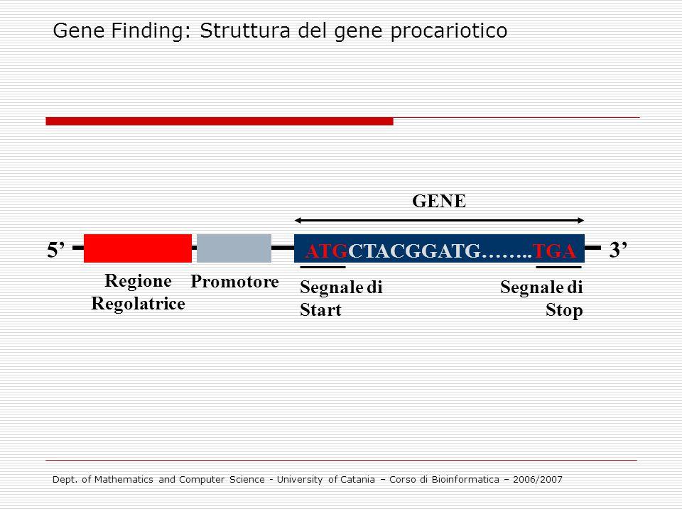Gene Finding: Struttura del gene procariotico