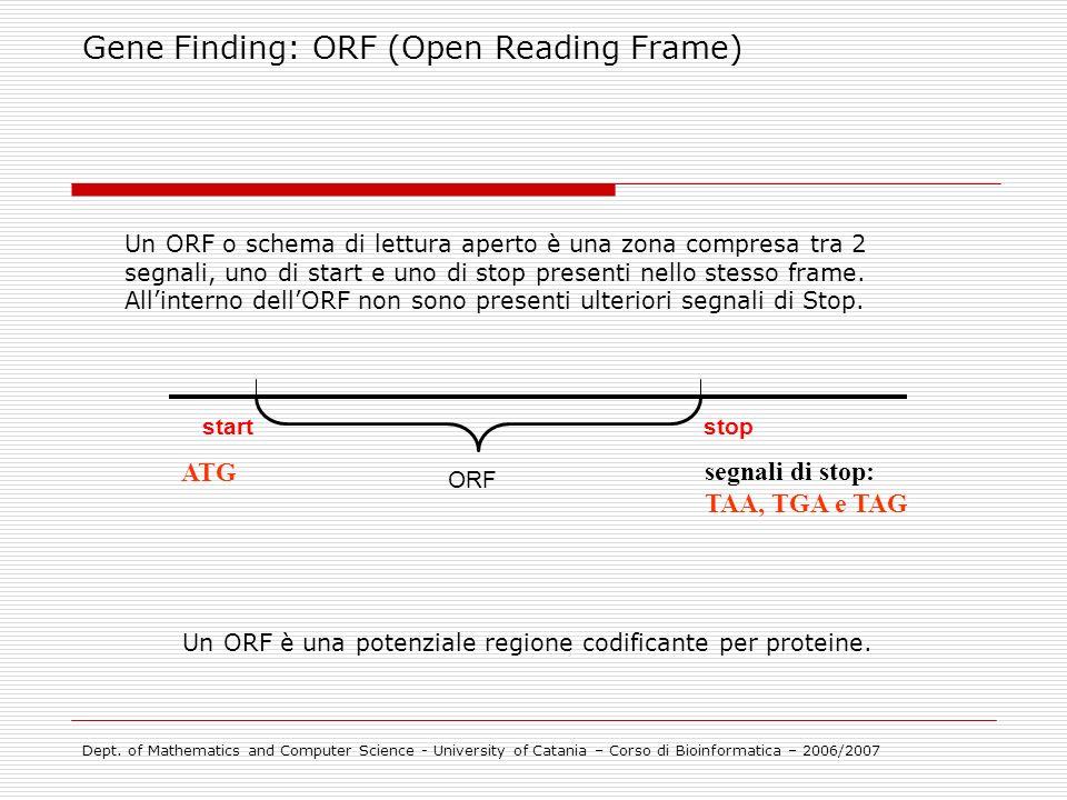 Un ORF è una potenziale regione codificante per proteine.