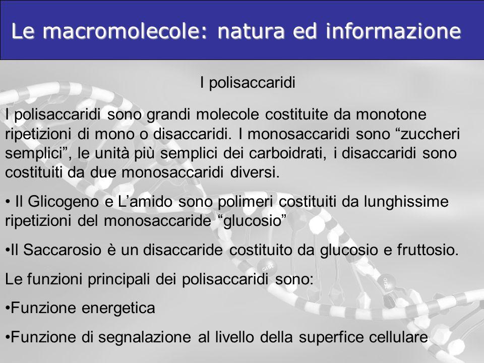 Le macromolecole: natura ed informazione