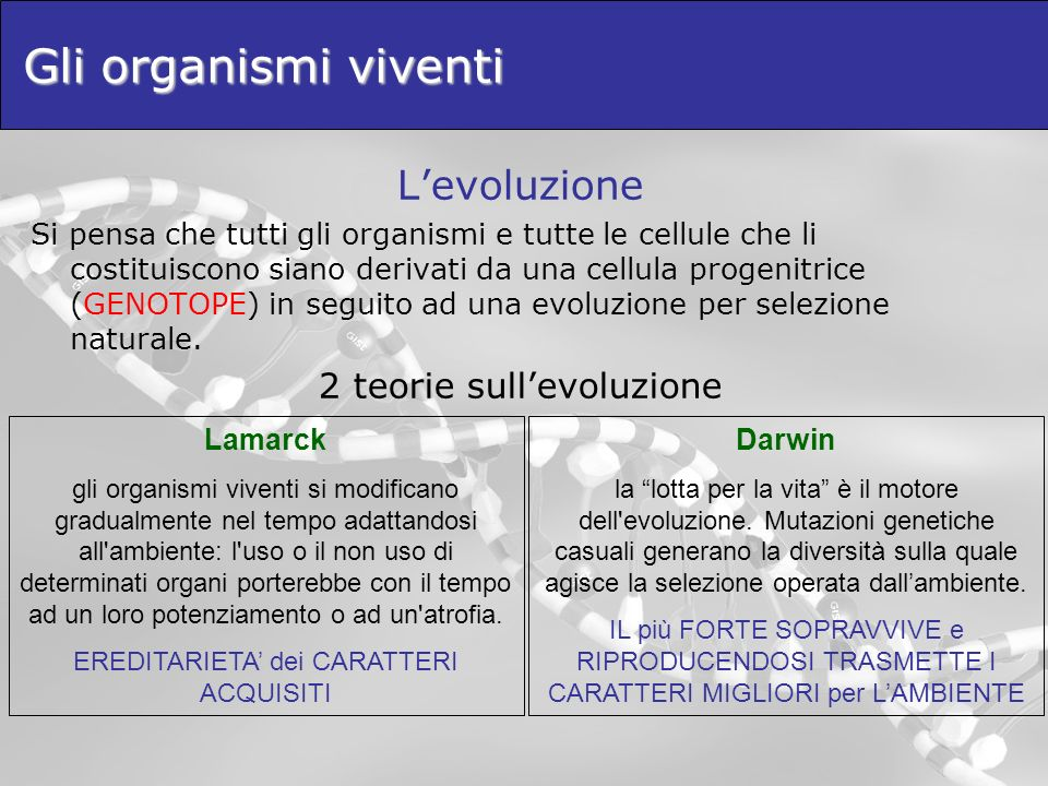 Gli organismi viventi L'evoluzione 2 teorie sull'evoluzione