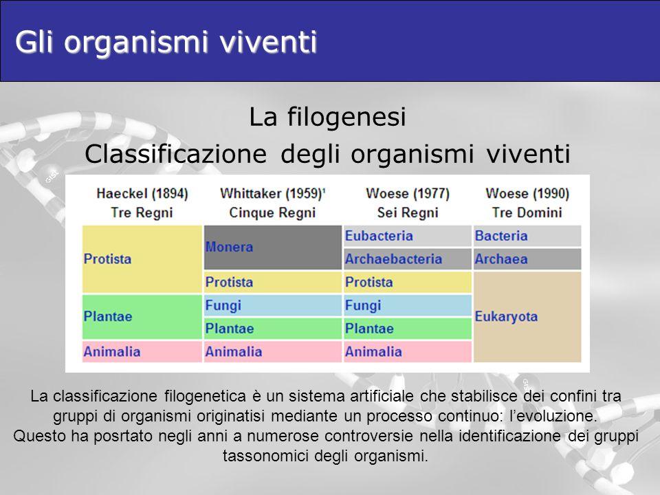 Classificazione degli organismi viventi