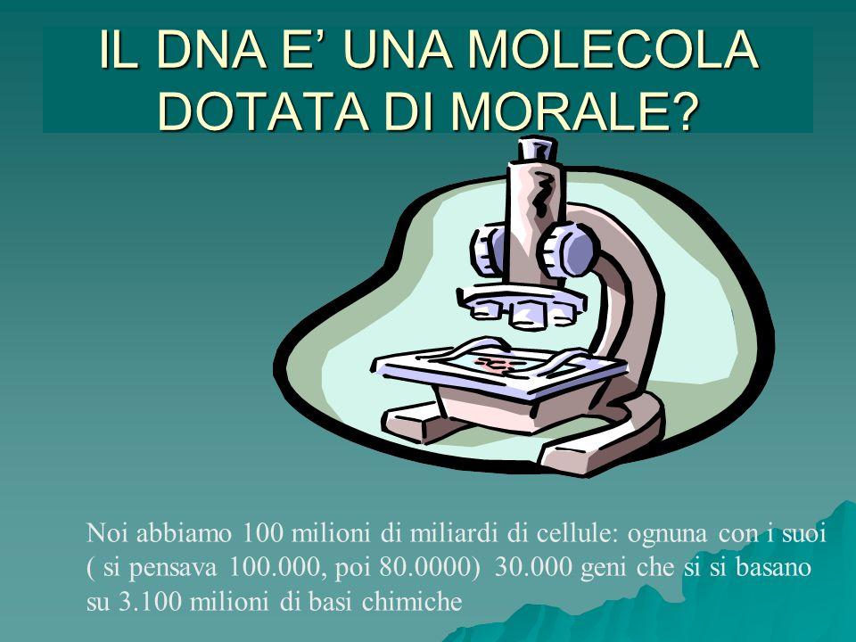 IL DNA E' UNA MOLECOLA DOTATA DI MORALE