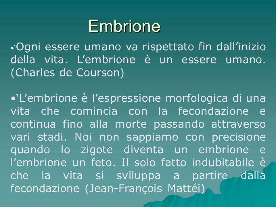 Embrione 'Ogni essere umano va rispettato fin dall'inizio della vita. L'embrione è un essere umano. (Charles de Courson)