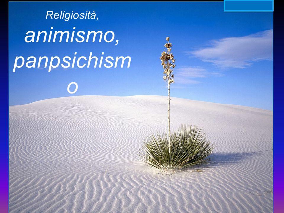 animismo, panpsichismo