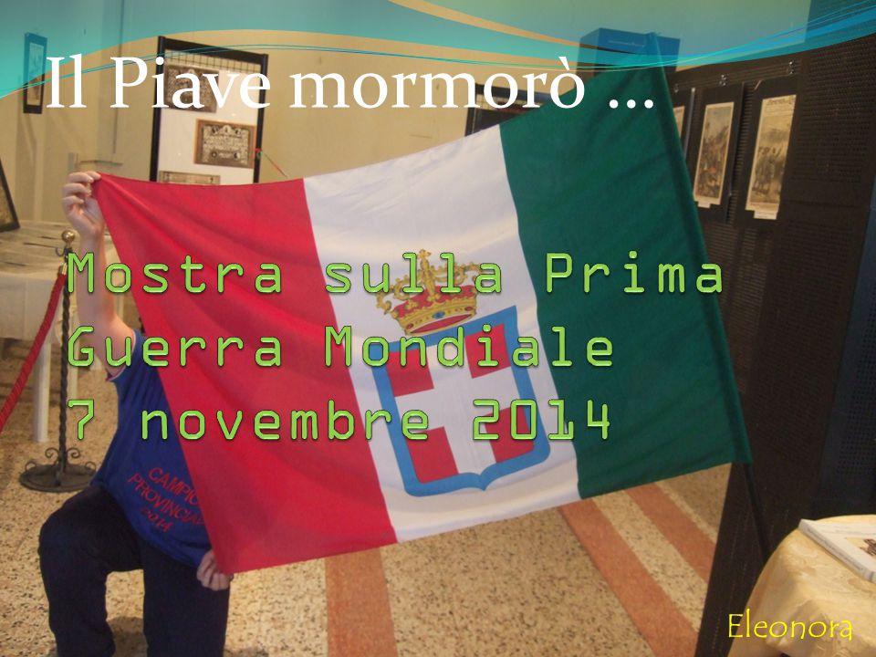 Mostra sulla Prima Guerra Mondiale 7 novembre 2014