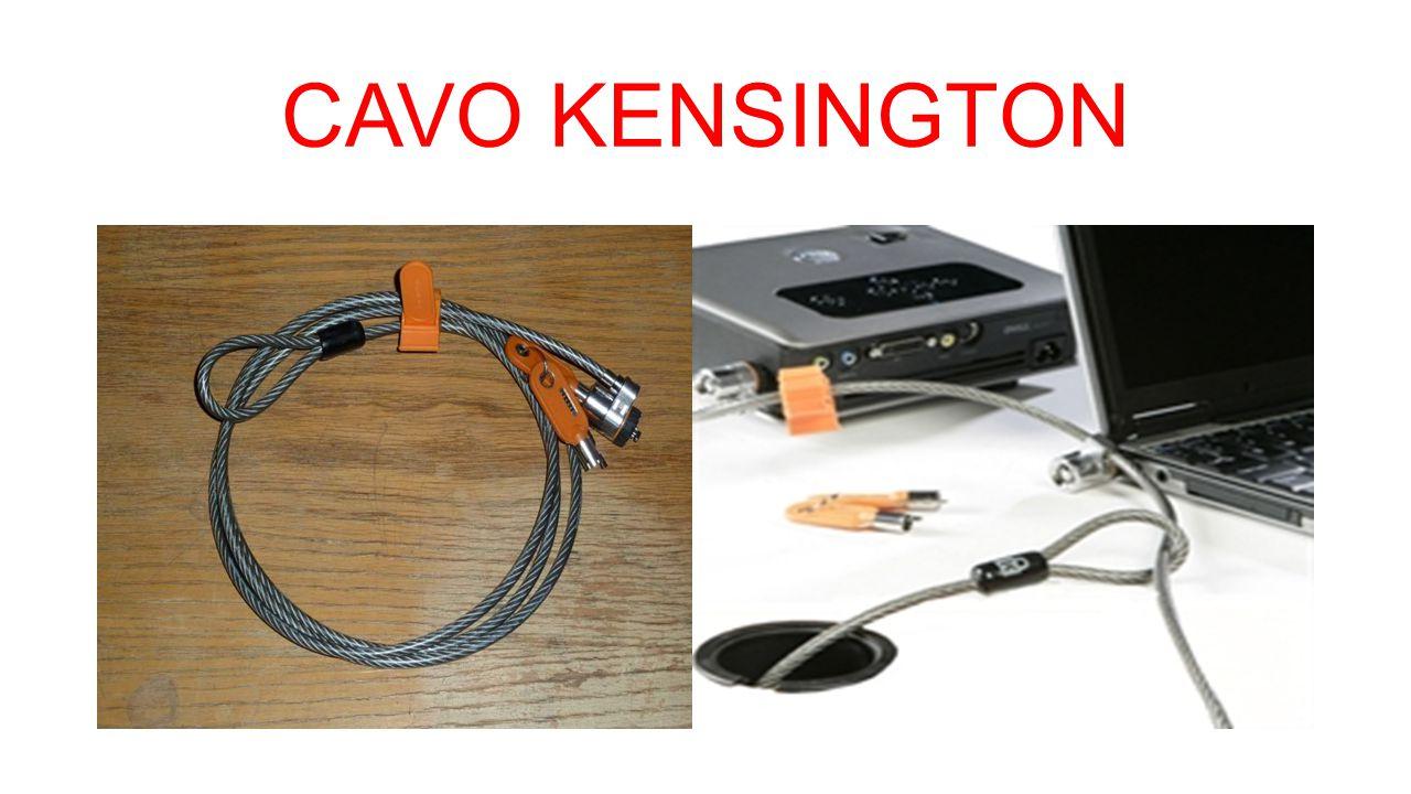 CAVO KENSINGTON