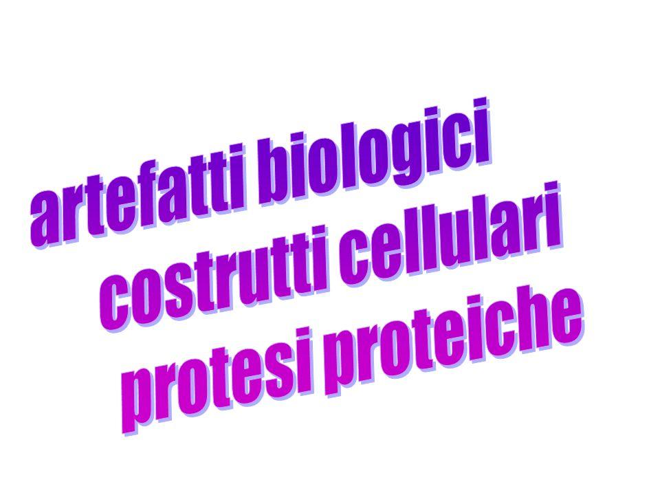 artefatti biologici costrutti cellulari protesi proteiche