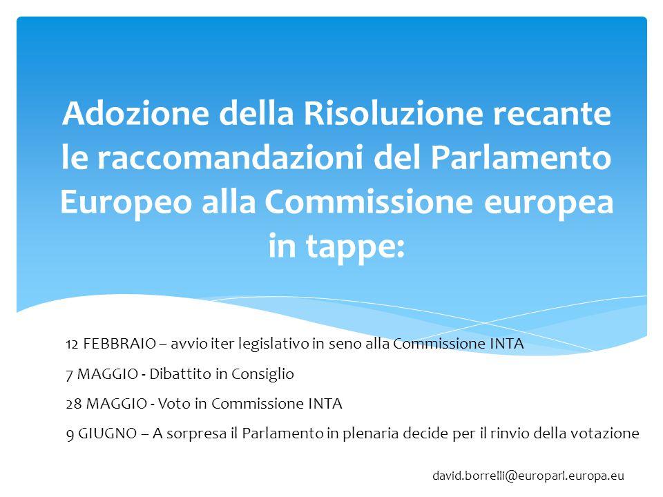 Adozione della Risoluzione recante le raccomandazioni del Parlamento Europeo alla Commissione europea in tappe: