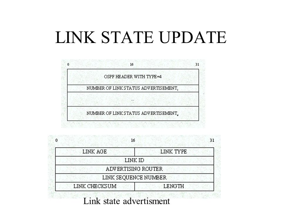LINK STATE UPDATE Link state advertisment