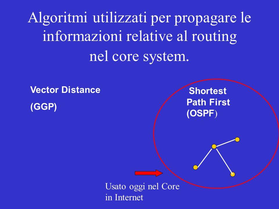 Algoritmi utilizzati per propagare le informazioni relative al routing nel core system.