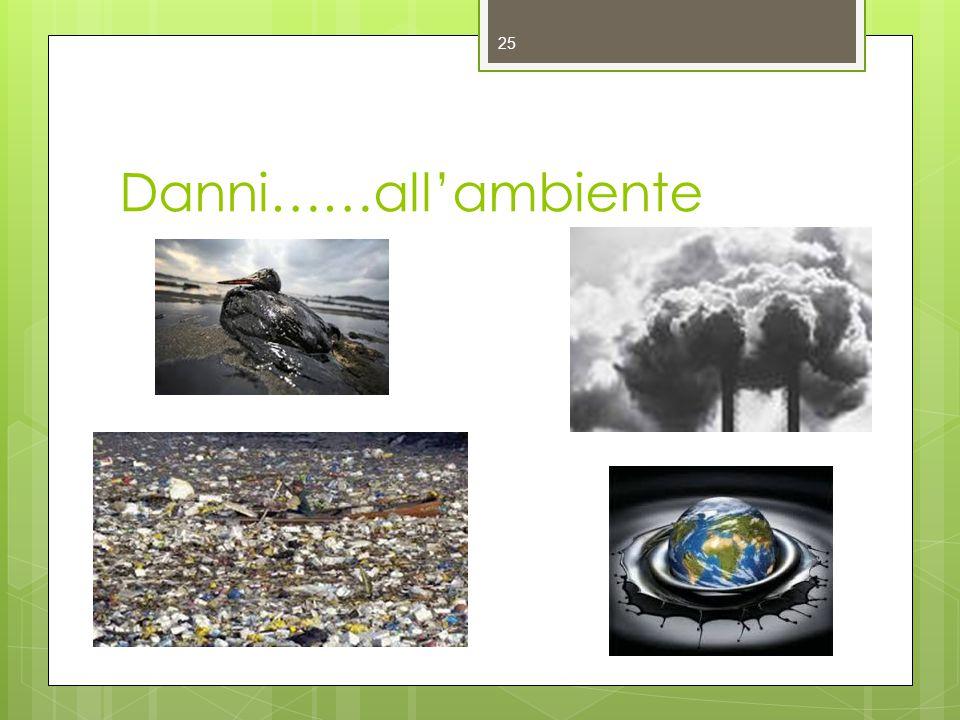 Danni……all'ambiente