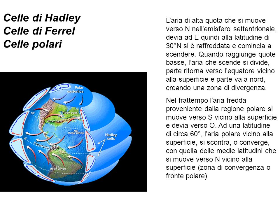 Celle di Hadley Celle di Ferrel Celle polari