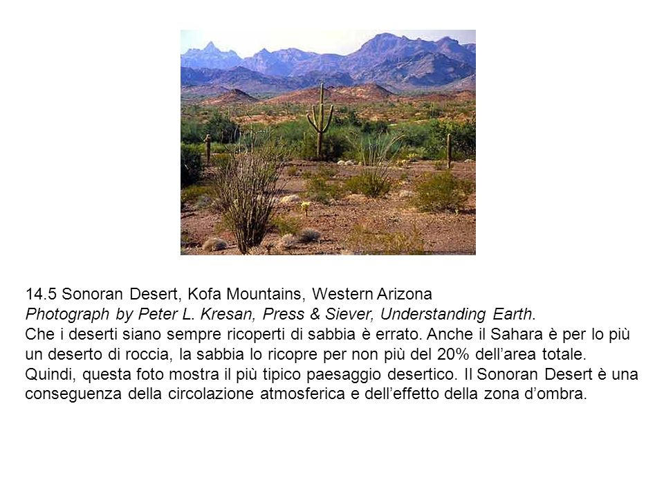 14.5 Sonoran Desert, Kofa Mountains, Western Arizona Photograph by Peter L. Kresan, Press & Siever, Understanding Earth.