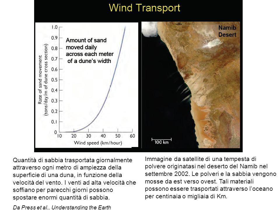 Quantità di sabbia trasportata giornalmente attraverso ogni metro di ampiezza della superficie di una duna, in funzione della velocità del vento. I venti ad alta velocità che soffiano per parecchi giorni possono spostare enormi quantità di sabbia.