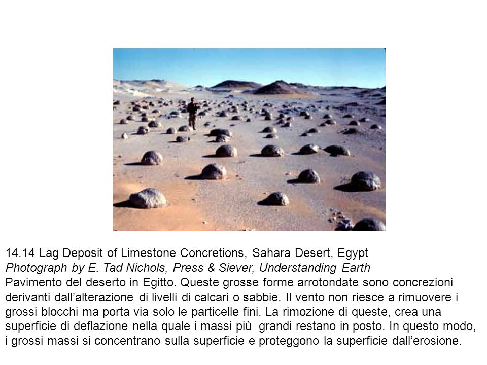 14.14 Lag Deposit of Limestone Concretions, Sahara Desert, Egypt Photograph by E. Tad Nichols, Press & Siever, Understanding Earth