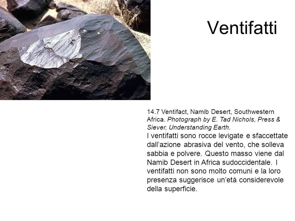 Ventifatti 14.7 Ventifact, Namib Desert, Southwestern Africa. Photograph by E. Tad Nichols, Press & Siever, Understanding Earth.