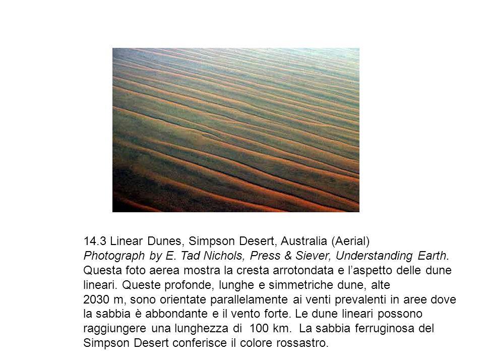 14. 3 Linear Dunes, Simpson Desert, Australia (Aerial) Photograph by E