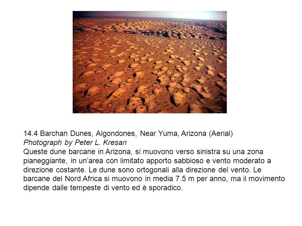 14.4 Barchan Dunes, Algondones, Near Yuma, Arizona (Aerial) Photograph by Peter L. Kresan