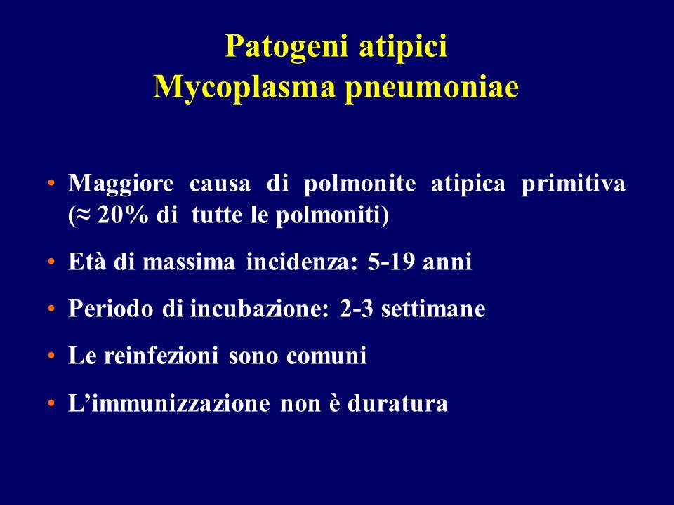 Patogeni atipici Mycoplasma pneumoniae