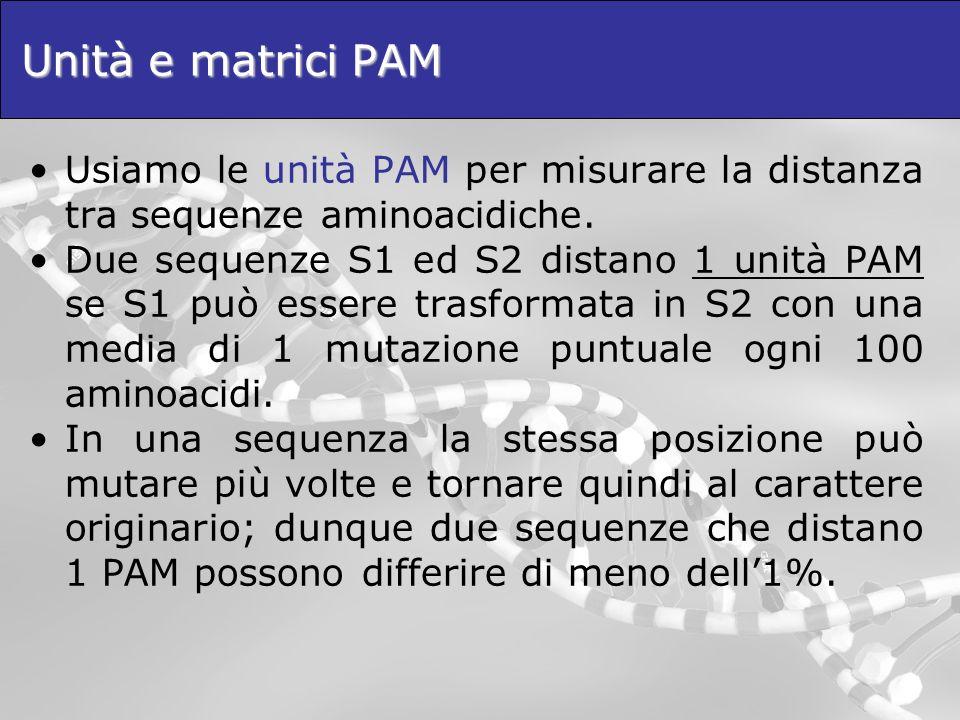 Unità e matrici PAM Usiamo le unità PAM per misurare la distanza tra sequenze aminoacidiche.