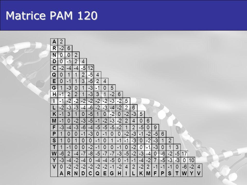 Matrice PAM 120 A 2 R -2 6 N D -1 4 C -4 -5 12 Q 1 E 3 G -3 5 H I L -6