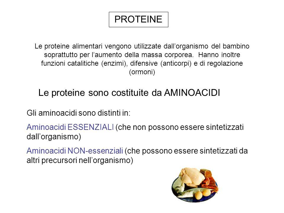 Le proteine sono costituite da AMINOACIDI