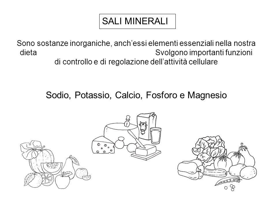 Sodio, Potassio, Calcio, Fosforo e Magnesio