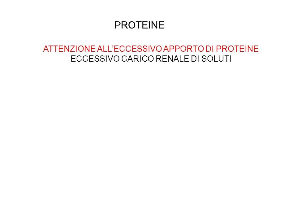 PROTEINE ATTENZIONE ALL'ECCESSIVO APPORTO DI PROTEINE ECCESSIVO CARICO RENALE DI SOLUTI