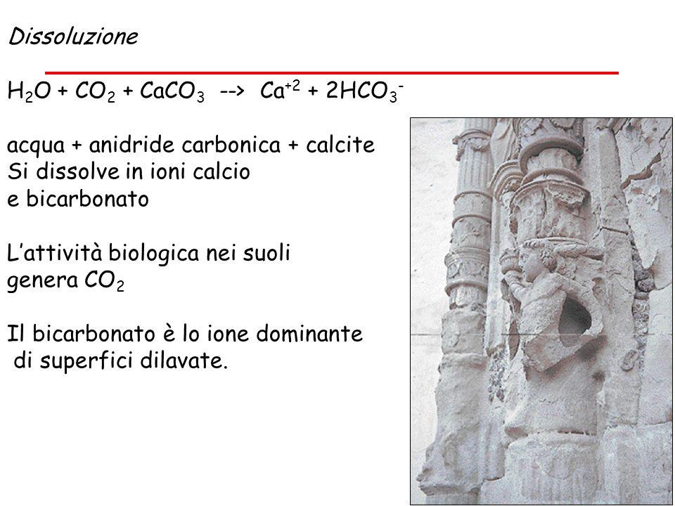 Dissoluzione H2O + CO2 + CaCO3 --> Ca+2 + 2HCO3- acqua + anidride carbonica + calcite. Si dissolve in ioni calcio.