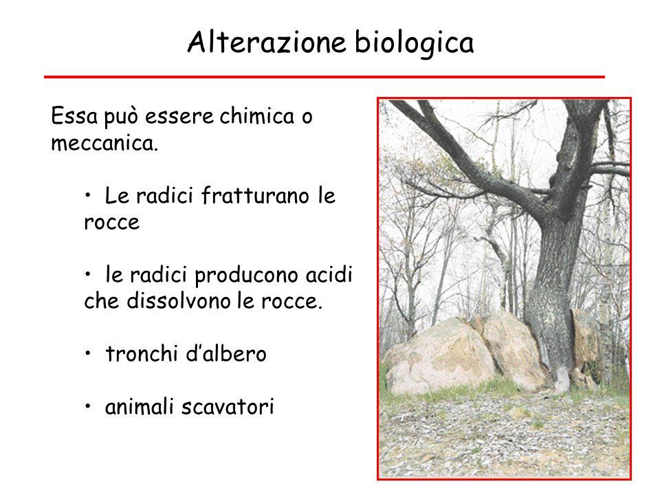 Alterazione biologica