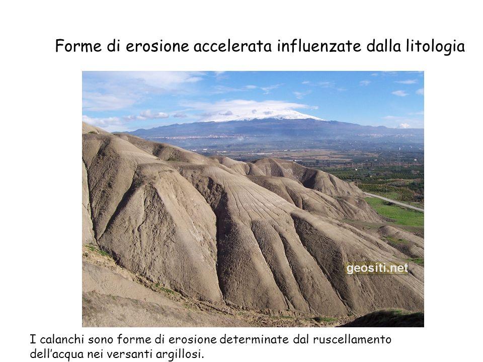 Forme di erosione accelerata influenzate dalla litologia