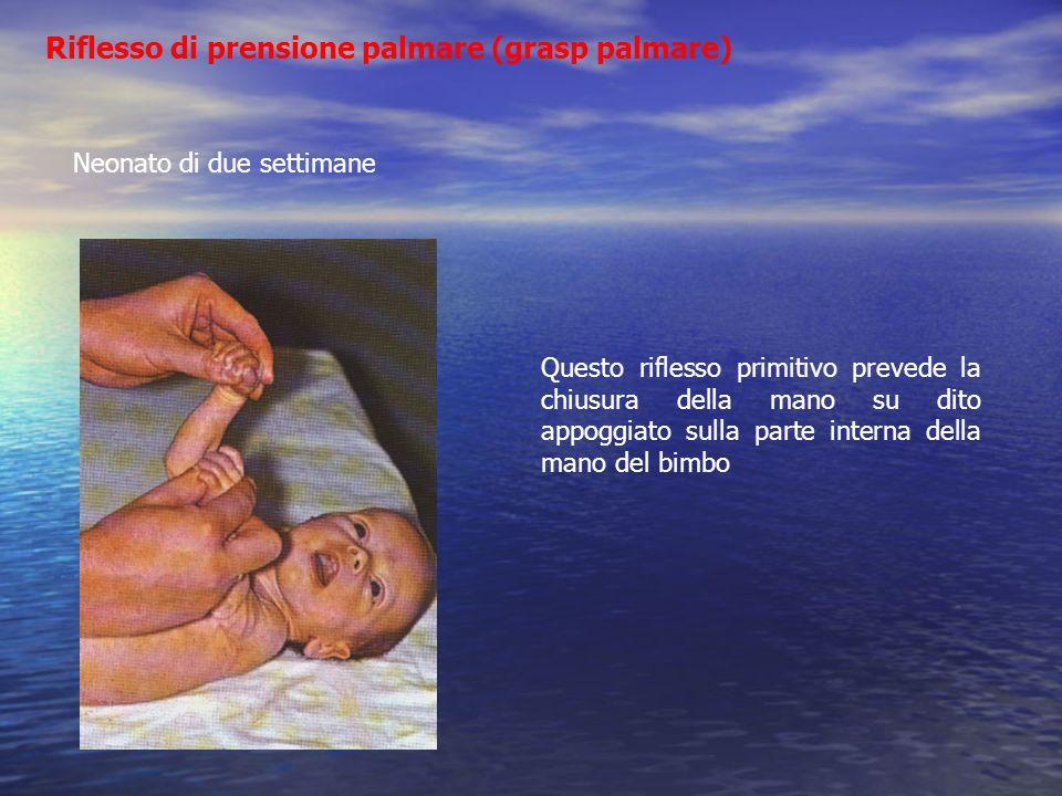 Riflesso di prensione palmare (grasp palmare)