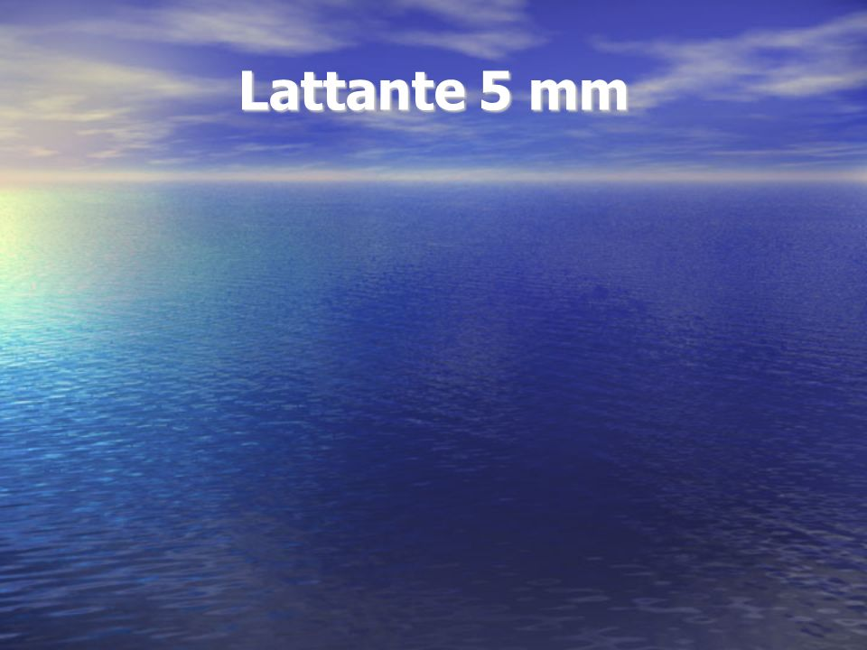 Lattante 5 mm