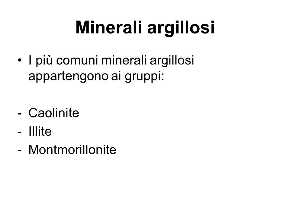 Minerali argillosi I più comuni minerali argillosi appartengono ai gruppi: Caolinite.