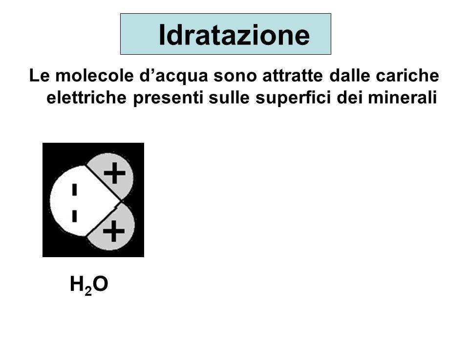 Idratazione Le molecole d'acqua sono attratte dalle cariche elettriche presenti sulle superfici dei minerali.