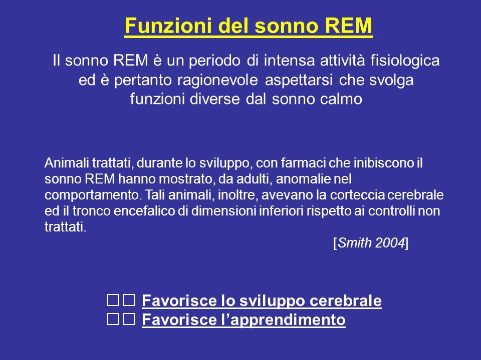 Funzioni del sonno REM