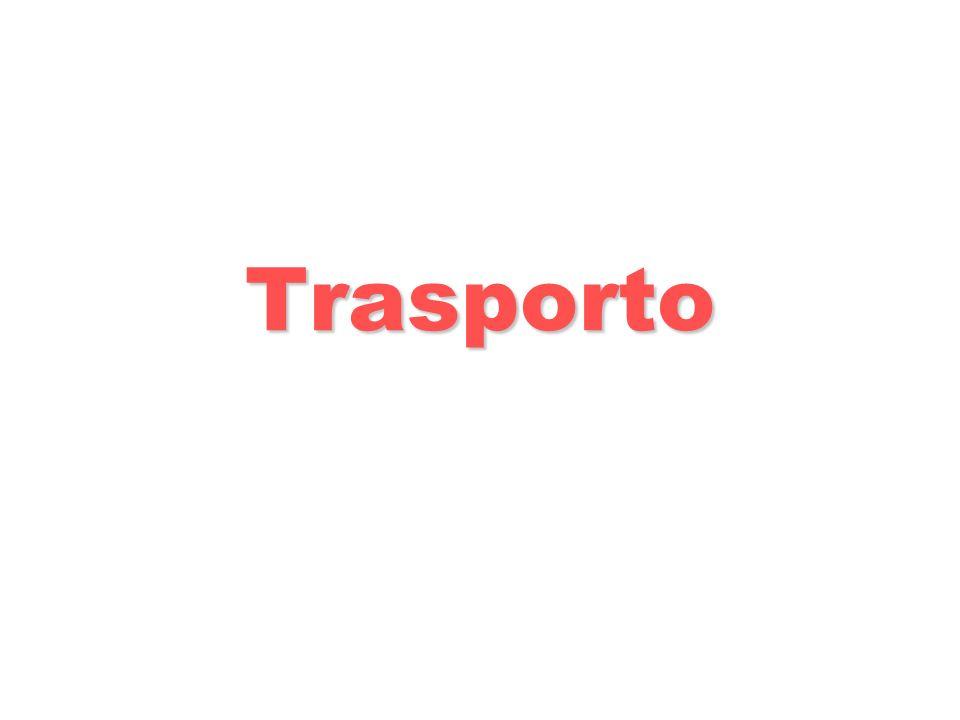 Trasporto